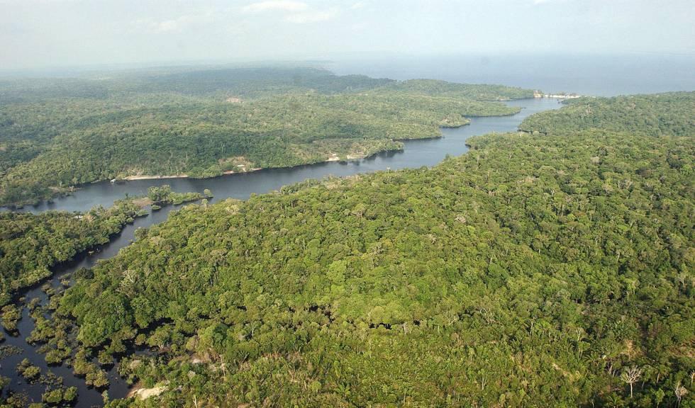 Foto aérea de uma parte da região amazônica.