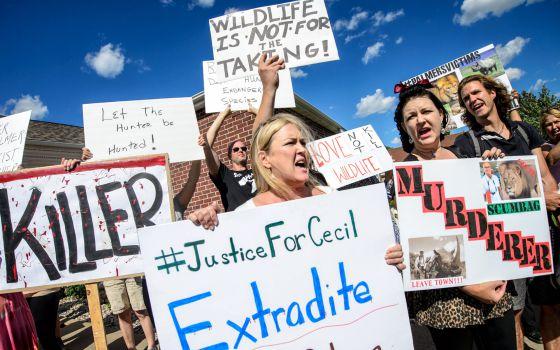 Protesto contra Palmer diante de seu consultório nos EUA.