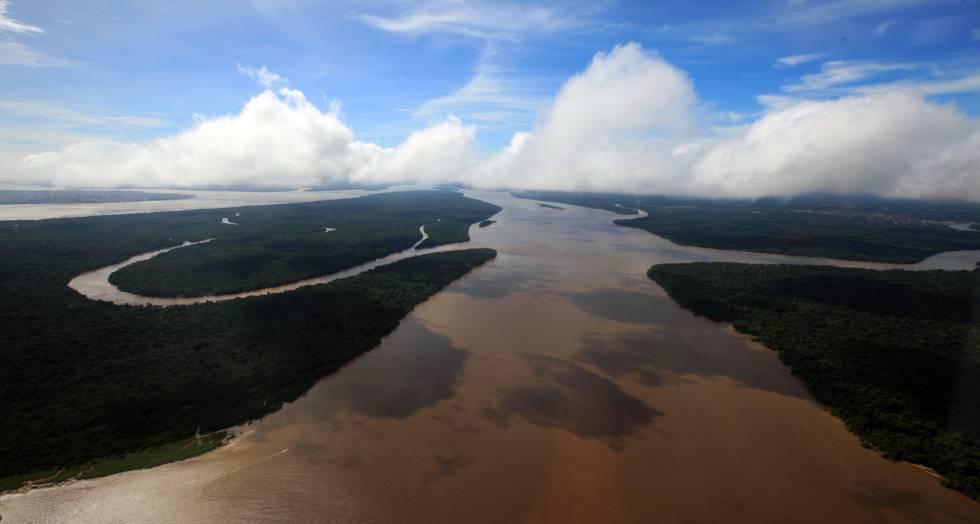 Floresta Amazônica, no Pará.