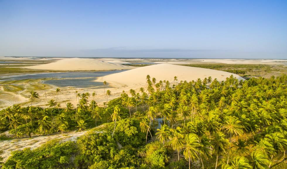 Coqueiros, dunas e lagoas naturais marcam a paisagem.