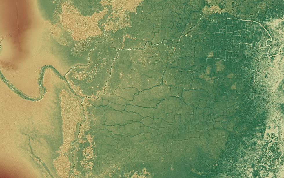 Imagem da rede de canais e campos conhecida como Pássaros do Paraíso, em Belize.