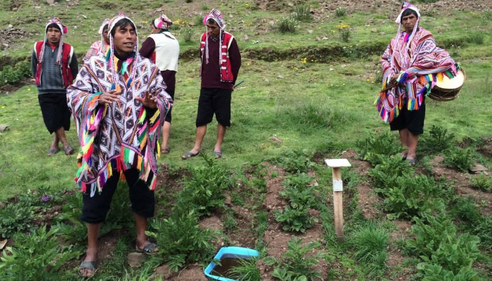 Agricultores no Parque da Papa Pisaq, em Cusco, no Peru.