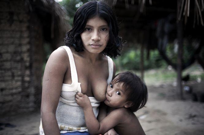 """Para muitos povos indígenas e tribais o conceito """"mãe"""" se refere não só a quem lhes dá a vida, alimento, refúgio e amor, mas também àquela na qual vivem, que é seu lar: mães são as selvas, desertos e montanhas que lhes proporcionam o sustento material e espiritual. Estes vínculos são muito potentes. Quando os laços se rompem por causa da colonização, as expulsões forçadas, a mineração, o desmatamento ou """"o desenvolvimento"""", as consequências podem ser devastadoras. Esta mãe e seu bebê pertencem à tribo mais ameaçada da Terra, os awás. Os awás dependem de sua selva para sobreviver. No entanto, estão em perigo pelas crescentes invasões de sua terra por parte de madeireiras, pecuaristas e colonos. """"Se a selva for destruída, nós seremos destruídos também"""", disse esta mãe awá à equipe da Survival International."""