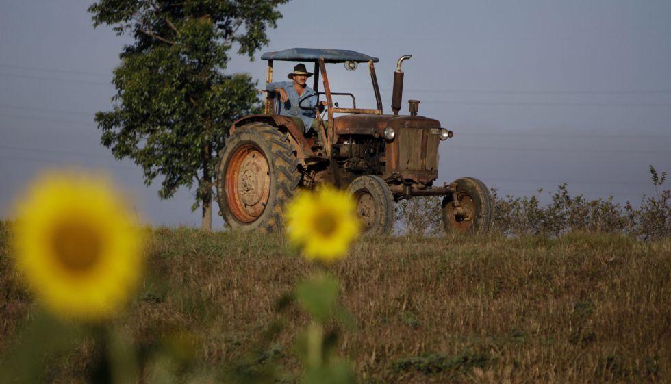 Área rural em Pinar del Río (Cuba), em foto de arquivo.