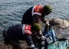 Outros 75 imigrantes em fuga da guerra síria foram resgatados após o afundamento da embarcação que seguia para a Grécia