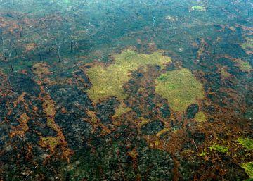 Presidente brasileiro recua após membros do Governo informarem que os 20 milhões de dólares oferecidos para auxiliar no combate aos incêndios na Amazônia seriam rejeitados