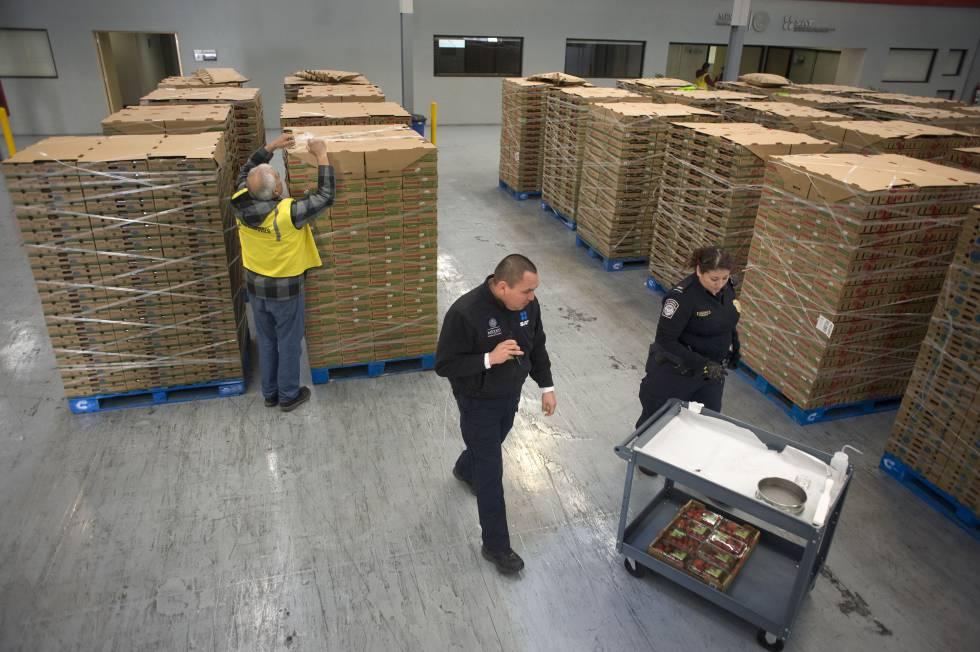Agentes alfandegários e tributários dos EUA examinam carregamento de morangos em Tijuana (México).
