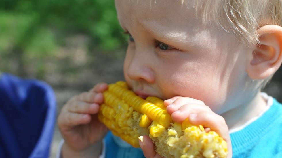 Os menores também podem comer sólidos não triturados.