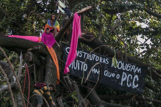 Ativistas em árvore no Parque Augusta nesta quarta.