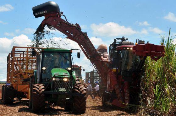 Colheita da safra de cana em Goiás.