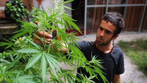 Um homem cuida de suas plantas em casa, em Montevidéu.