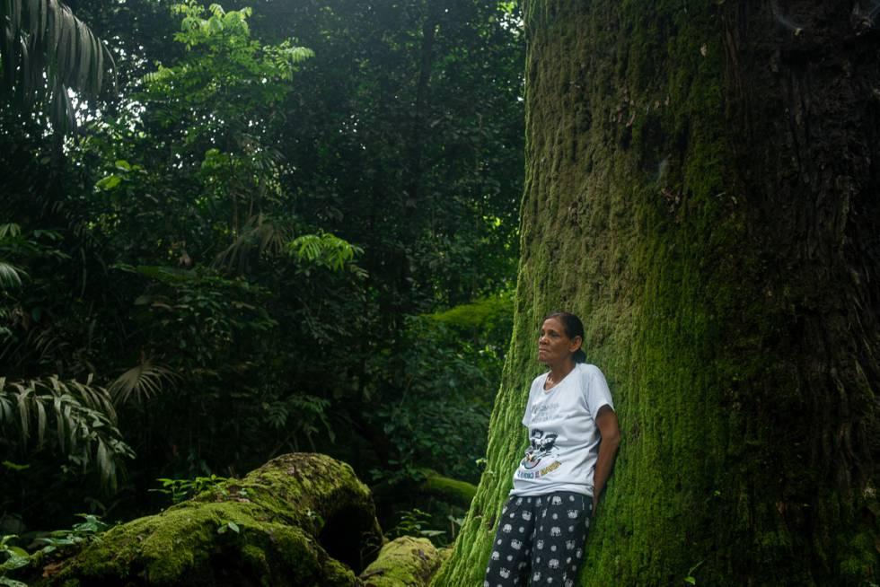 Claudeci Ribeiro, irmã de Zé Cláudio, assassinado em 2011 no Pará.