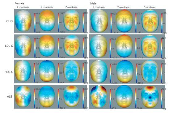 Modelos de rostos em 3D usados na pesquisa.