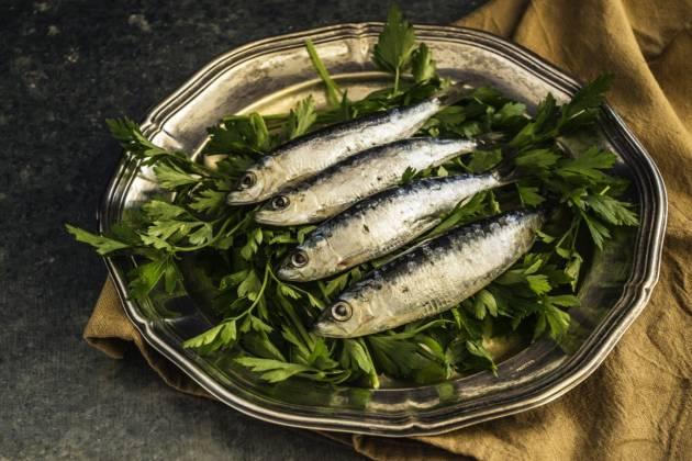 Proteínas e gordurosas? Não: sardinhas