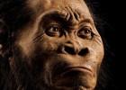 O 'Homo naledi', descoberto na África do Sul, poderia ter realizado um dos primeiros rituais funerários que conhecemos