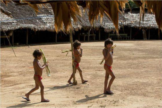 Crianças Yanomami.