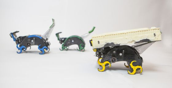 Robôs construtores com mentalidade de enxame.