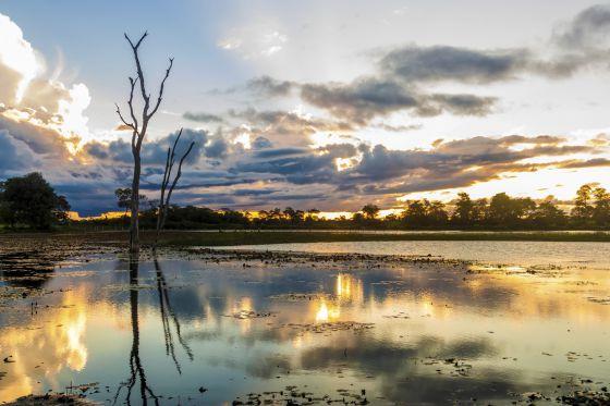 Zona de Pantanal no Brasil.
