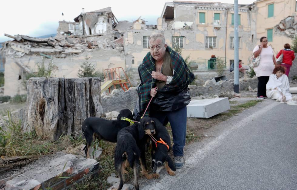 Um homem com seus cachorros em Amatrice, na Itália, após o terremoto desta quarta.