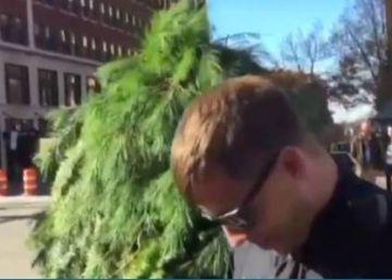 Policiais norte-americanos detém um indivíduo vestido de pinheiro por bloquear o trânsito