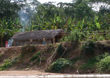 Os anciãos de um povo amazônico, os tsimanes, têm a mesma saúde vascular que um ocidental de 50 anos