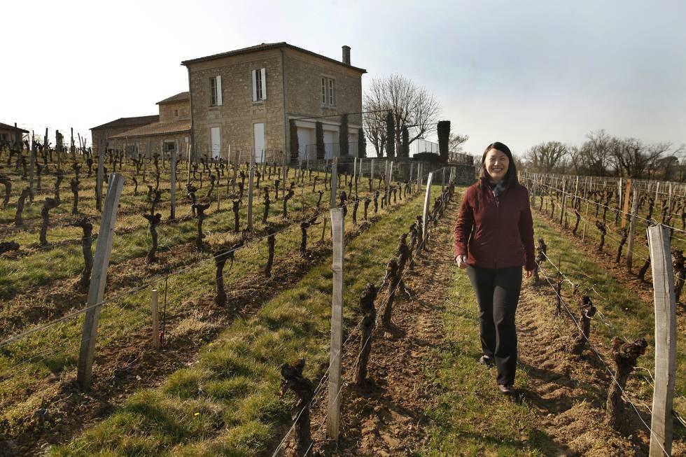 Elaine Kwok, proprietária de três 'châteaux' franceses, caminha entre os vinhedos de seu Château Haut-Brisson.