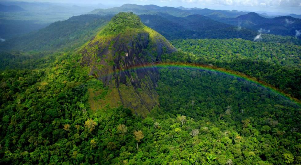 Vista do parque Nacional Montanhas do Tumucumaque, no Amapá.