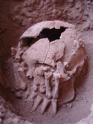 Os restos do decapitado encontrados na tumba de Lapa do Santo.