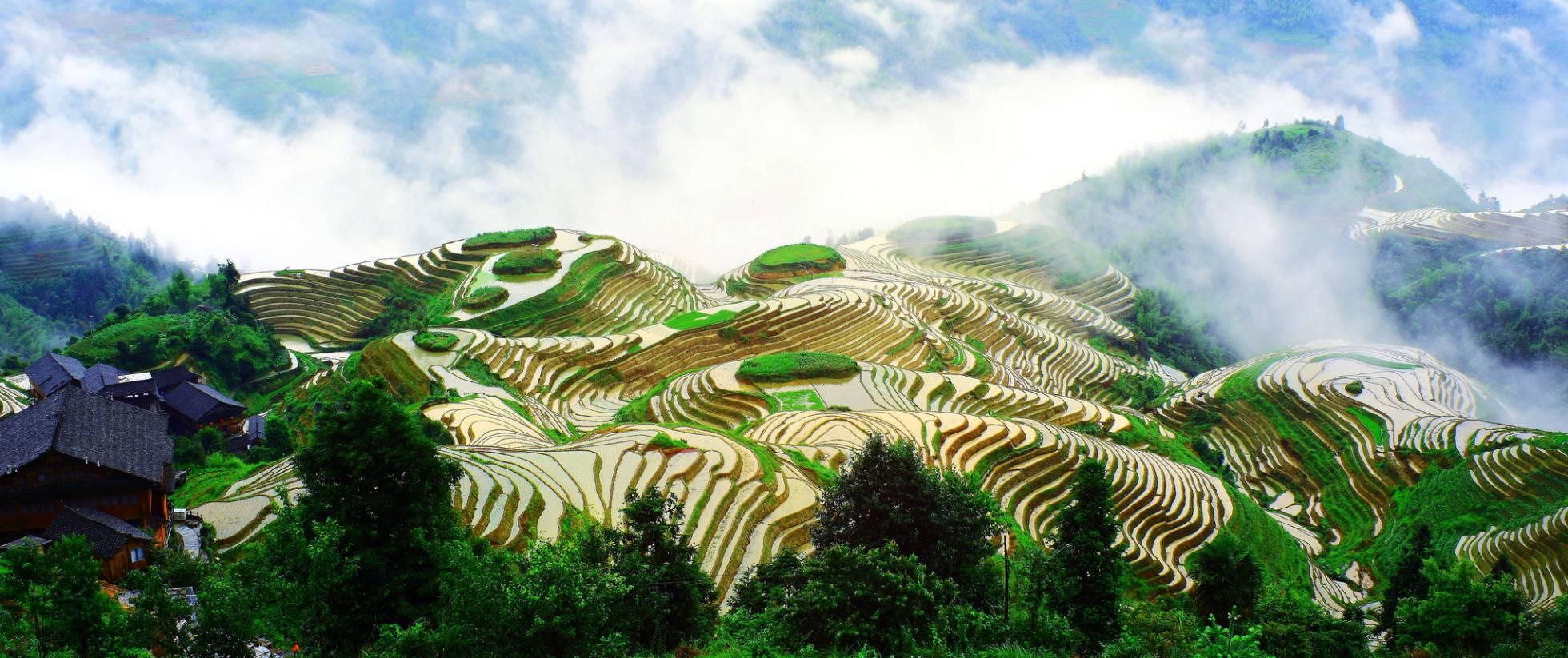 Terrazas de arroz en el condado de Longsheng (China).