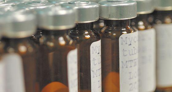 Doses da vacina da tuberculose que está sendo desenvolvida.