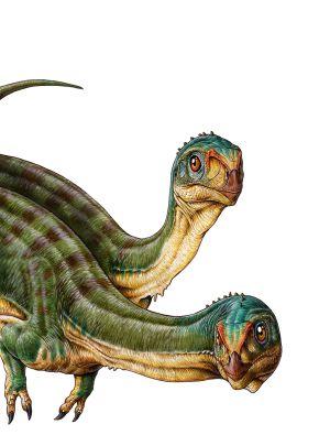 Representação de dois 'Chilesaurus diegosuarezi'