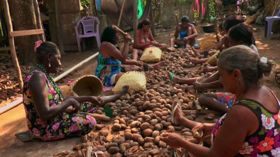 Quebradeiras de coco no documentário 'Vozes da Amazônia'.