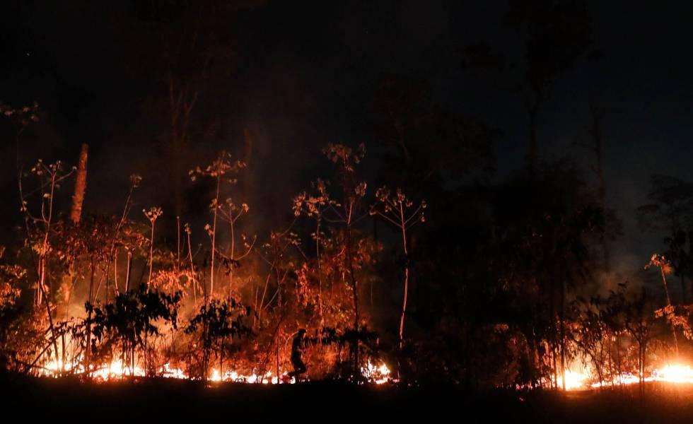 A Amazônia brasileira perdeu em agosto 1.698 quilômetros quadrados de sua cobertura vegetal por conta das queimadas.