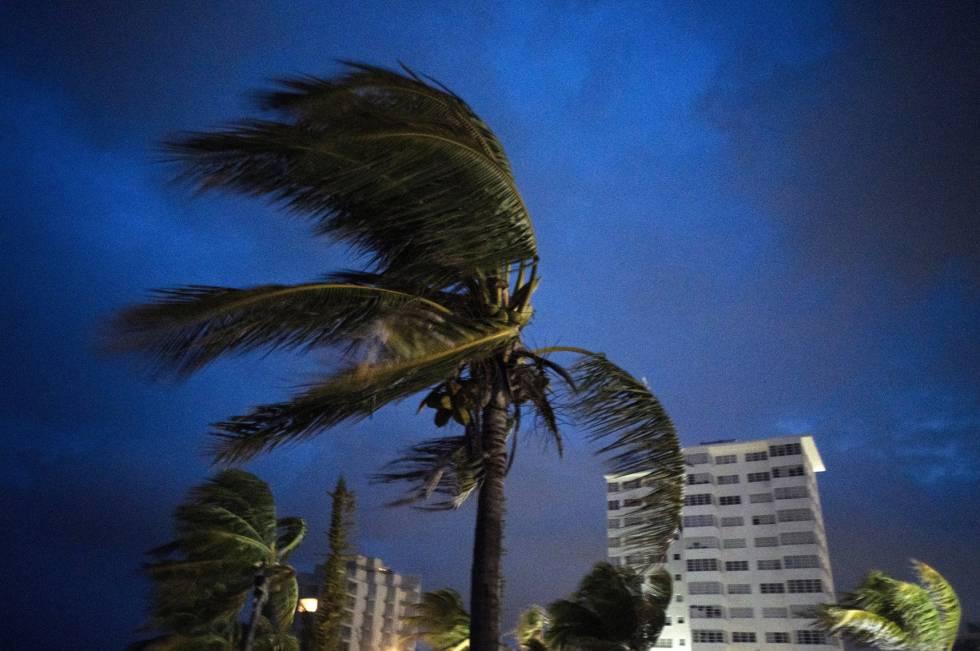 Furacão Dorian sacode as árvores de Freeport, nas Bahamas, na noite de domingo. Sudeste dos EUA se prepara para chegada da tempestade.
