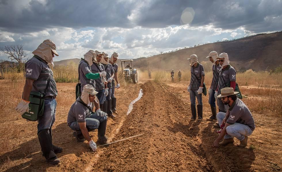 Agricultores recebem treinamento sobre o solo.