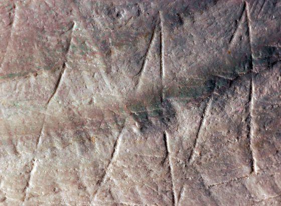 Parte da gravura achada em uma concha da jazida de Trinil (Indonésia).