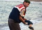 A morte de uma criança que foge da guerra, congelada em fotografia, é uma afronta, um grito da vida contra a morte