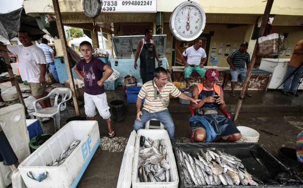 Pescadores no sábado na cidade equatoriana de Pedernales